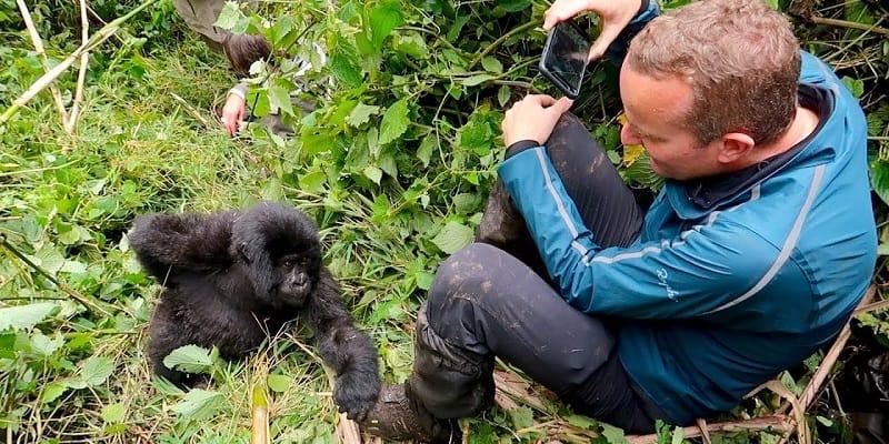 Setkání s gorilím mládětem