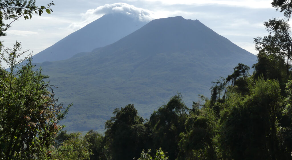 Sopky v národním parku Mgahinga