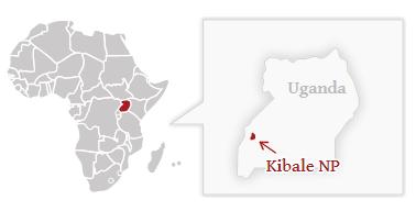 Národní park Kibale - poloha na mapě Ugandy