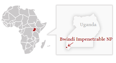 Národní park Bwindi - poloha na mapě Ugandy